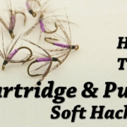 Partridge-and-Purple-Soft-Hackle-Fly-Tying-for-Trout