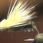 Peacock-Elk-Hair-Caddis-Fly-Tying-Video-Instructions