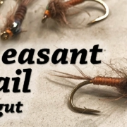 Pheasant-Tail-Catgut-Nymph-Fly-Tying-for-Trout