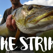 Pike-Strike