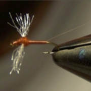 Rusty-Spinner-Mayfly-Fly-Tying-Directions