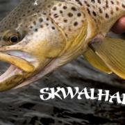 SKWALHALLA-Teaser-Skwala-Hatch-Montana