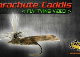 Schroeders-Parachute-Caddis-Fly-Tying-Video-Instructions