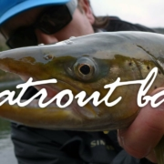 Seatrout-Bay