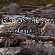 Sunrise-On-The-Swamp