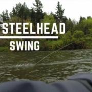 Swinging-for-New-Zealand-STEELHEAD