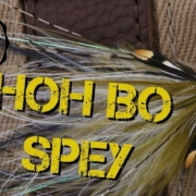 Tuesday-Live-Fly-Tying-Hoh-Bo-Spey-var