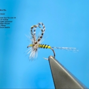 Tying-Andre-Puyans-Loop-Wing-Dry-Fly-with-Davie-McPhail