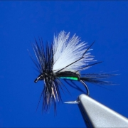 Tying-a-Blow-Fly-Humpy-with-Davie-McPhail