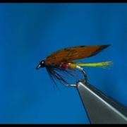 Tying-a-Classic-Style-Wet-Fly-Mixed-Body-with-Davie-McPhail