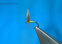 Tying-a-Clyde-Style-Wet-Fly-the-Blae-Ginger-with-Davie-McPhail