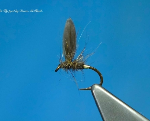 Tying-a-Clyde-Style-Wet-Fly-the-Blae-Hares-Lug-with-Davie-McPhail