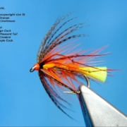 Tying-a-Competition-Dunkeld-Wet-Fly-by-Davie-McPhail