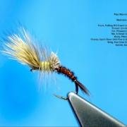 Tying-a-Pale-Morning-Dun-Emerger-with-Davie-McPhail