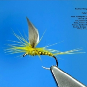 Tying-a-Parachute-Winged-Dry-Fly-with-Davie-McPhail
