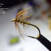 Tying-a-Woodcock-Hares-Lug-Spider-Wet-Fly-by-Davie-McPhail