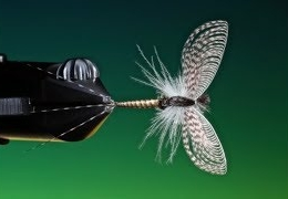 Tying-a-mayfly-spinner-with-Barry-Ord-Clarke