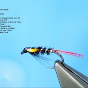Tying-the-Col.-Downman-Diawl-Bach-by-Davie-McPhail