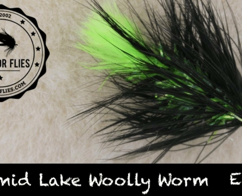 Tying-the-Pyramid-Lake-Woolly-Worm-Cutthroat-Trout-Fly-Ep-95-PF