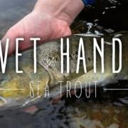 Wet-Hands