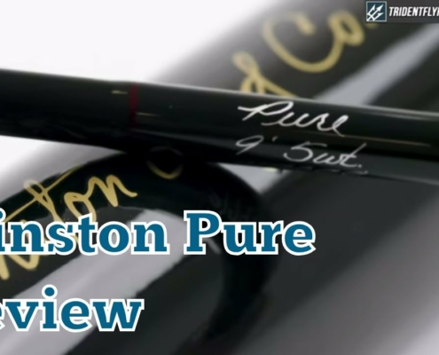 Winston-Pure-Fly-Rod-Review