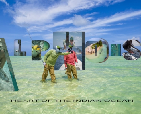 ALPHONSE-The-heart-of-the-Indian-Ocean