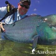 Aquahulk-Fly-Fishing-for-Bumphead-Parrotfish