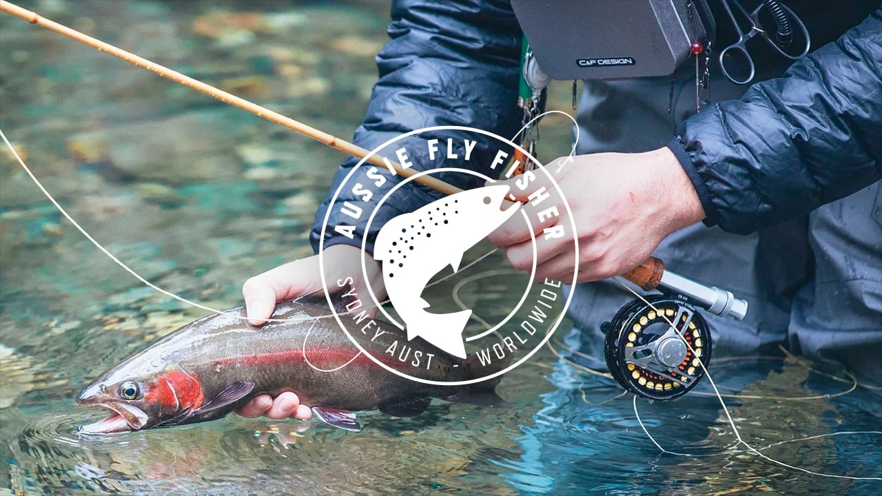Aussie-Fly-Fisher-Fly-Fishing-Blue-Mountains-Australia