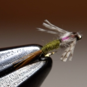 Barrs-Emerger-BWO