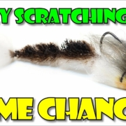 Belly-Scratching-Game-Changer-by-Fly-Fish-Food