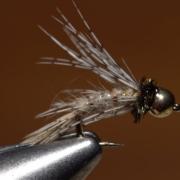 Bird-of-Prey-Caddis