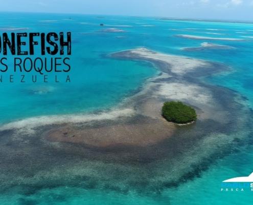 Bonefish-en-Los-Roques-parte-1
