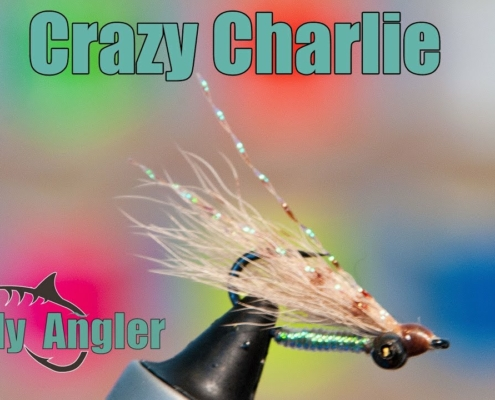 Calf-Tail-CRAZY-CHARLIE-Underwater-Footage-Great-fly-for-bonefish-and-other-fish-in-the-flats