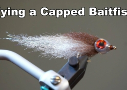 Capped-Baitfish-UNDERWATER-FOOTAGE-McFly-Angler-Fly-Tying-Tutorial