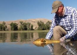 Carp-Fishing-Carpology-Part-2-by-Todd-Moen