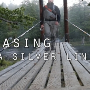 Chasing-a-silver-lining