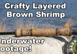 Crafty-Layered-Shrimp-UNDERWATER-FOOTAGE-McFly-Angler-Fly-Tying-Tutorial