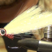 DNA-Deceiver-Saltwater-Baitfish-Fly-Tying-Instructions-and-Directions
