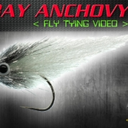 EP-Bay-Anchovy-Fly-Tying-Video-Instructions-Enrico-Puglisi-Fly-Pattern