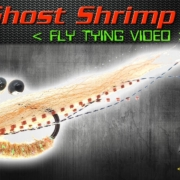 EP-Ghost-Shrimp-Fly-Tying-Video-Instructions-Enrico-Puglisi