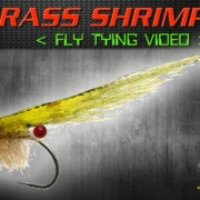 EP-Grass-Shrimp-Fly-Tying-Instructions-Enrico-Puglisi-Fly-Pattern