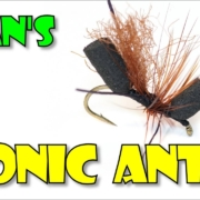 Egans-Bionic-Ant-by-Fly-Fish-Food