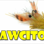 El-Crawcito-by-Fly-Fish-Food