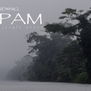Finding-Tapam