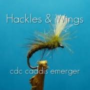 Fly-Tying-CdC-Caddis-Emerger
