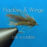 Fly-Tying-Cdc-X-Caddis-Hackles-Wings