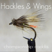 Fly-Tying-Championship-Caddis-Hackles-Wings