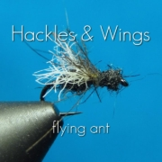 Fly-Tying-Flying-Ant-Hackles-Wings