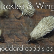 Fly-Tying-Goddard-Caddis-CdC-Hackles-Wings