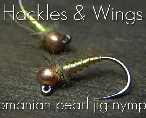 Fly-Tying-Romanian-Pearl-Jig-Nymph-Hackles-Wings